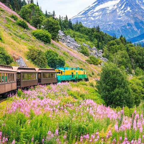 Eisenbahnabenteuer mit der White Pass & Yukon Railway, Alaska