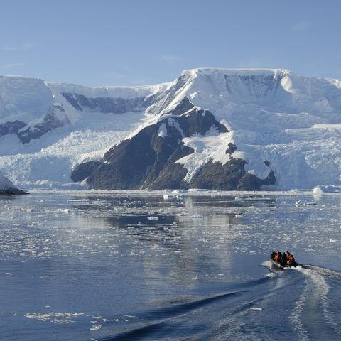 Neko Harbour auf der antarktischen Halbinsel, Antarktis