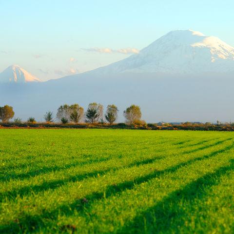 Nationalsymbol der Armenier, aber im Ausland (Türkei) gelegen: der Ararat, Armenien