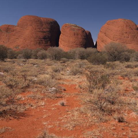 Die Olgas (Kata Tjuta) im Outback, Australien
