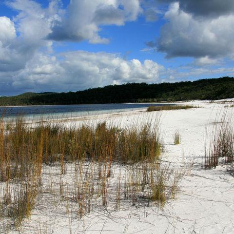 Dünenlandschaft auf Fraser Island, Australien