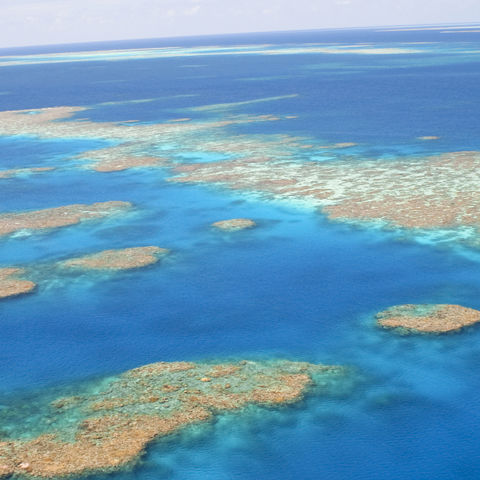 Great Barrier Reef an der Ostküste, Australien