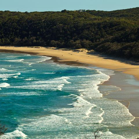 Strand in Queensland, Australien
