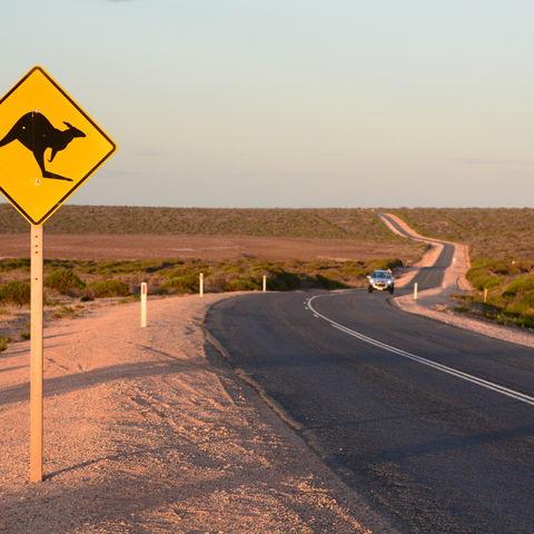 Straße bei Monkey Mia, Australien