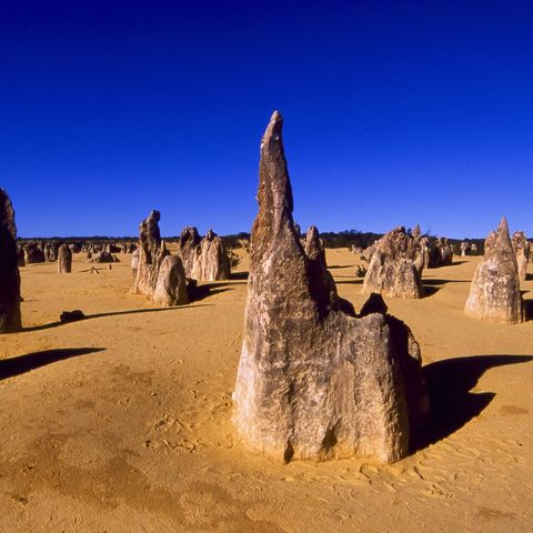 Die Pinnacles in Western Australia, Australien