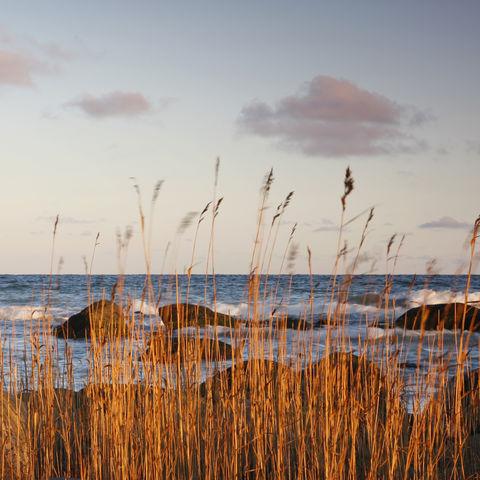 Abendstimmung an der Baltischen Küste, Estland, Baltikum