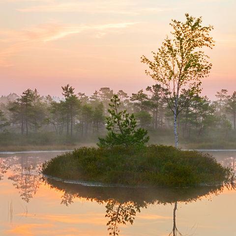 Morgen nach einer weißen Nacht, Lettland