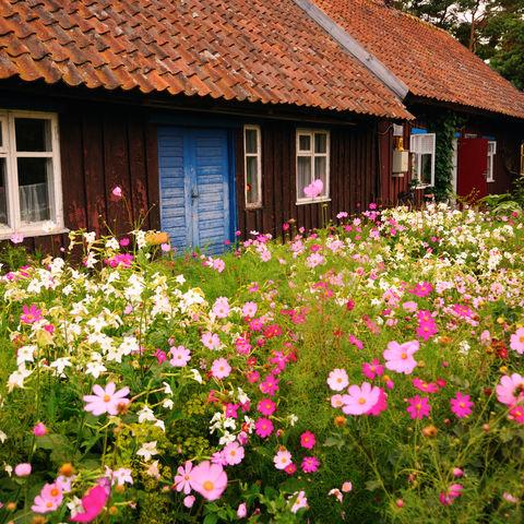 Fischerhaus in Nida, Litauen