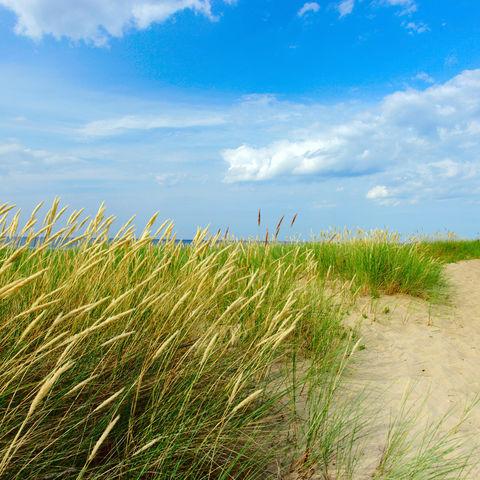 Über Ländergrenzen hinweg: ewig lange Ostseeküste, Baltikum