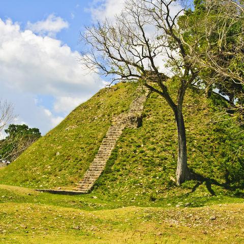 Ruinen eines Tempels in Altun Ha, vom Dschungel verschlungen, Belize
