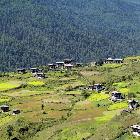 Ländliches Gebiet in Haa-Tal, Bhutan