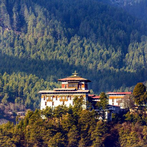Der Dzong inmitten von Bäumen, Bhutan