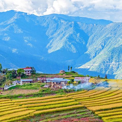 Farm umgeben von Reisfeldern in der Nähe von Trashigang, Ost-Bhutan, Bhutan
