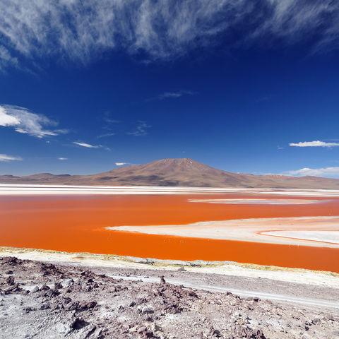Blick über die Laguna Colorada, Bolivien