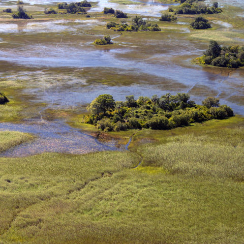 Okavango Delta von oben, Botswana