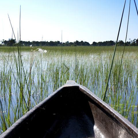 Fahrt mit dem Mokoro durch das Okavango Delta, Botswana