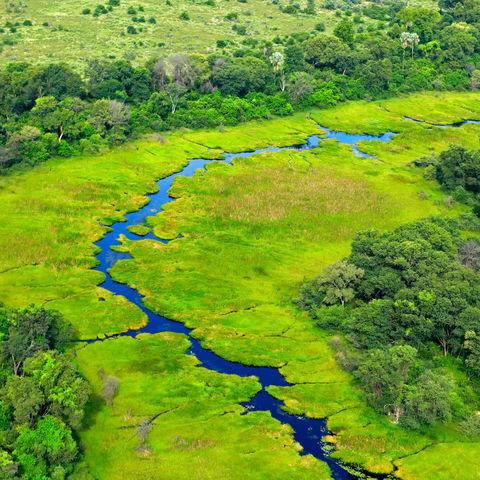 Okavango Delta während der Regenzeit, Botswana