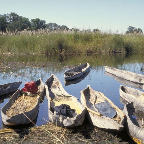 Mokoros, typisches Fortbewegungsmittel im Okavangodelta, Botswana