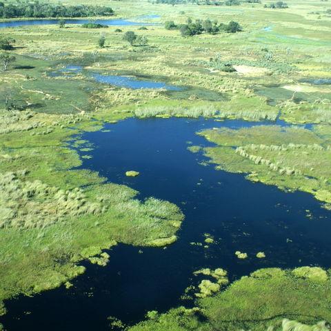 Das Okavangodelta in der Mittagssonne, Botswana