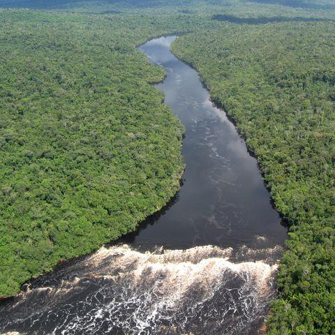 Der tropische Amazonas aus der Luft, Brasilien