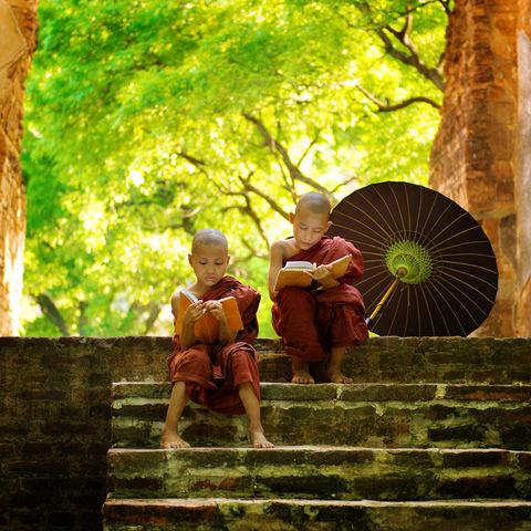 Zwei junge Mönche vertieft in die Lehren des Buddha, Myanmar