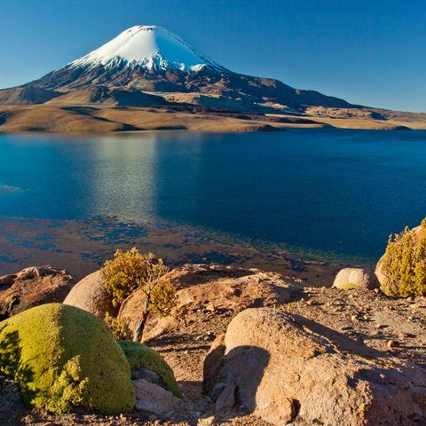 Der Chungará See vor dem Vulkan Parinacota im Lauca Nationalpark, Chile
