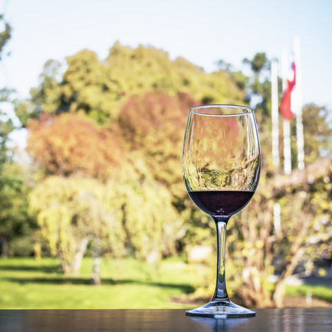 Darf nicht fehlen in Santiago: Weinverkostung auf einem Weingut, Chile