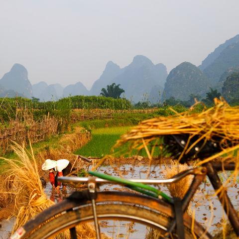 Typischer ländlicher Blick über Heu auf die Berge, China