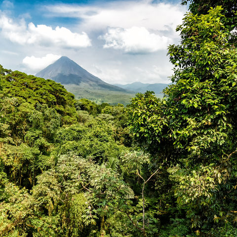 Blick auf den Vulkan Arenal in La Fortuna © Oliver Nowak, Dreamstime.com