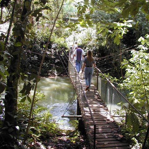 Kleine Hängebrücke in der Gegend um Sarapiquí, Costa Rica