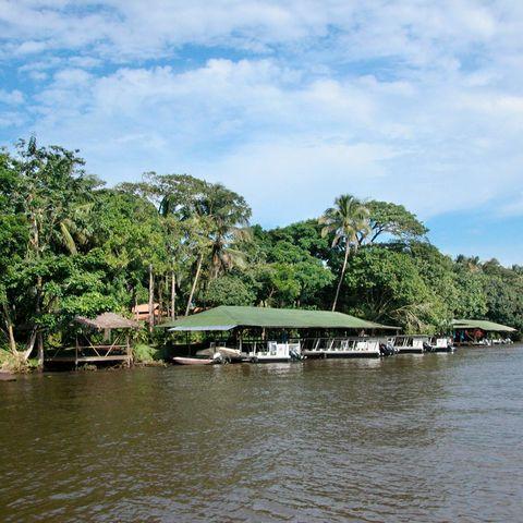 Die Mawamba Lodge im Tortuguero-Nationalpark, Costa Rica