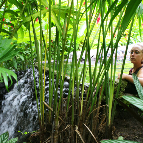 Tropische heiße Quellen, Costa Rica