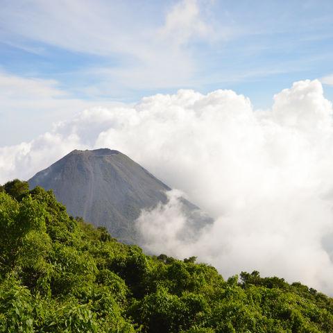 Vulkangigant Izalco in geheimnisvollem Wolkenumhang, Cerro Verde National Park, El Salvador