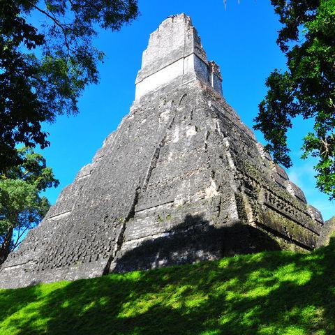 Ein Meisterwerk der Maya erhebt sich aus sattgrünem Regenwald, Tikal, Guatemala