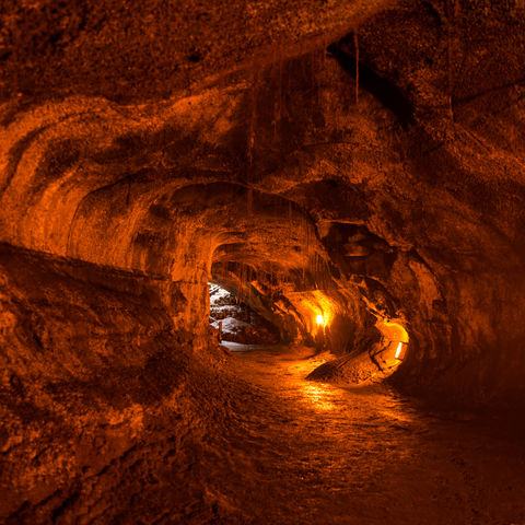 Entstand aus einem alten Lavastrom: Thurston Lava Tube, Hawaii Volcanoes National Park, Big Island, Hawaii