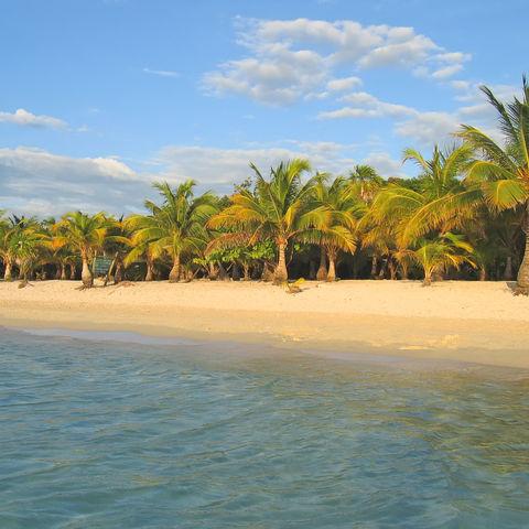Die Seele baumeln lassen auf einer karibischen Insel, Honduras