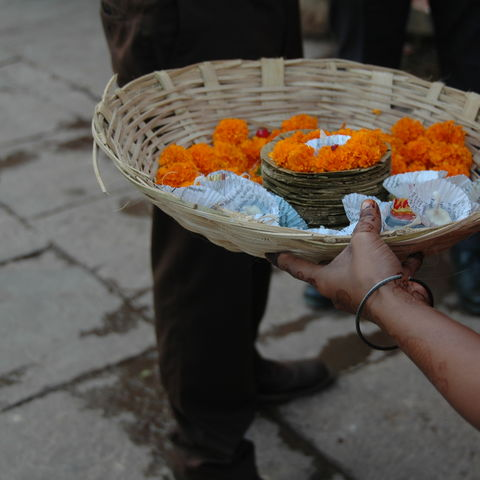 Butterblumen in einem Körbchen, Indien