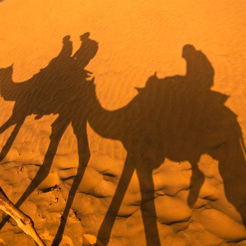 Kamelritt in der Thar-Wüste bei Jaisalmer, Indien