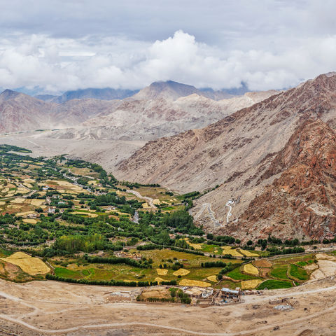 Grüne Oase des Nubra-Tals, Indien
