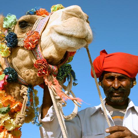Kamelsafari in Rajasthan, Indien