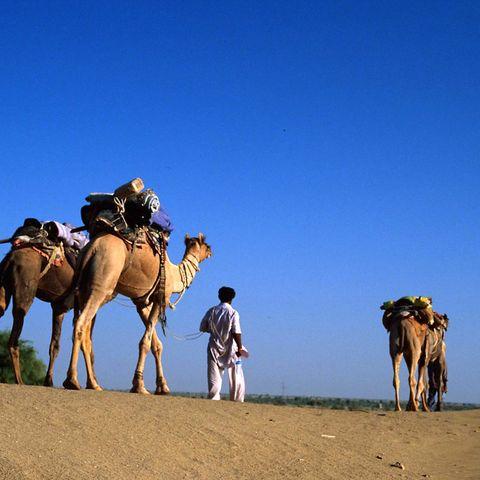 Kamel-Mann in der Jaisalmer Wüste, Indien
