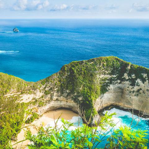 Blick auf die Steilklippen von Nusa Penida und den Kelingking Beach, Bali, Indonesien