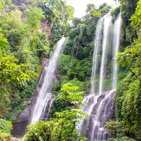 Sekumpul Wasserfall im Dschungel, Bali, Indonesien