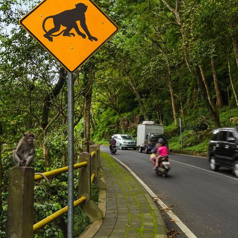 Verkehrsschild auf Bali, Indonesien