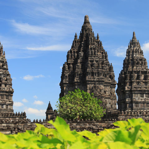 Der Prambanan-Tempel in Yogyakarta, Indonesien