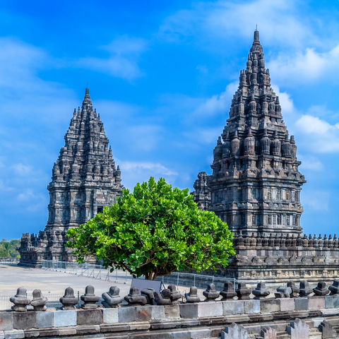 Prambanan Hindutempel, Yogyakarta, Java, Indonesien