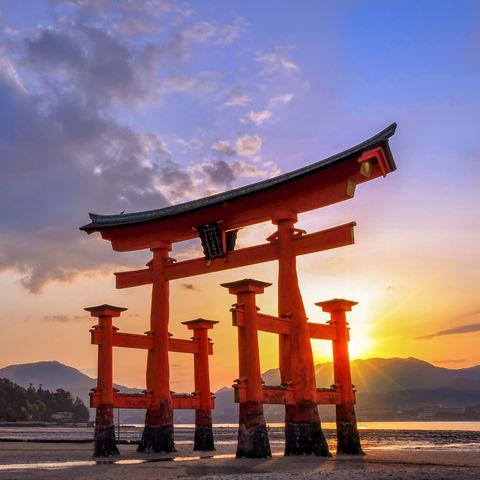 Torii in Miyajima, Japan