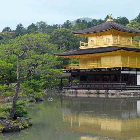 Der Goldene Pavillon, Kinkakuji, in Kyoto, Japan