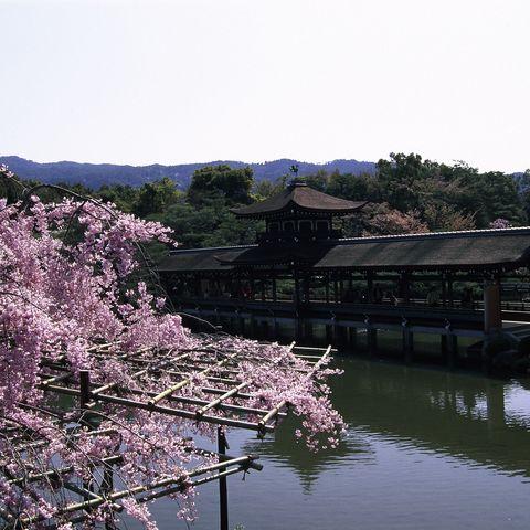 Heian Schrein, Japan