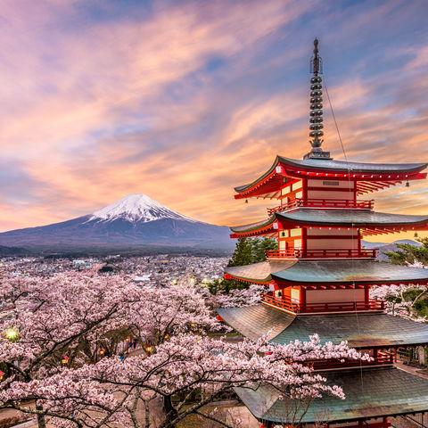 Blick auf den Mount Fuji von der Chureito Pagode aus, Japan